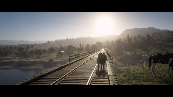 Red Dead Redemption 2_20181111211725
