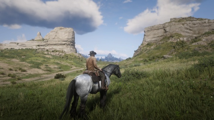 Red Dead Redemption 2_20181112195704